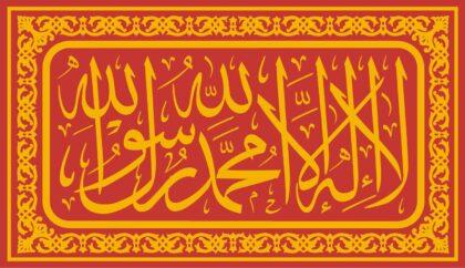 The kiswa on the Prophet's (ﷺ) tomb