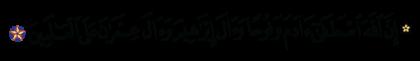 آل عمران 3 ،33